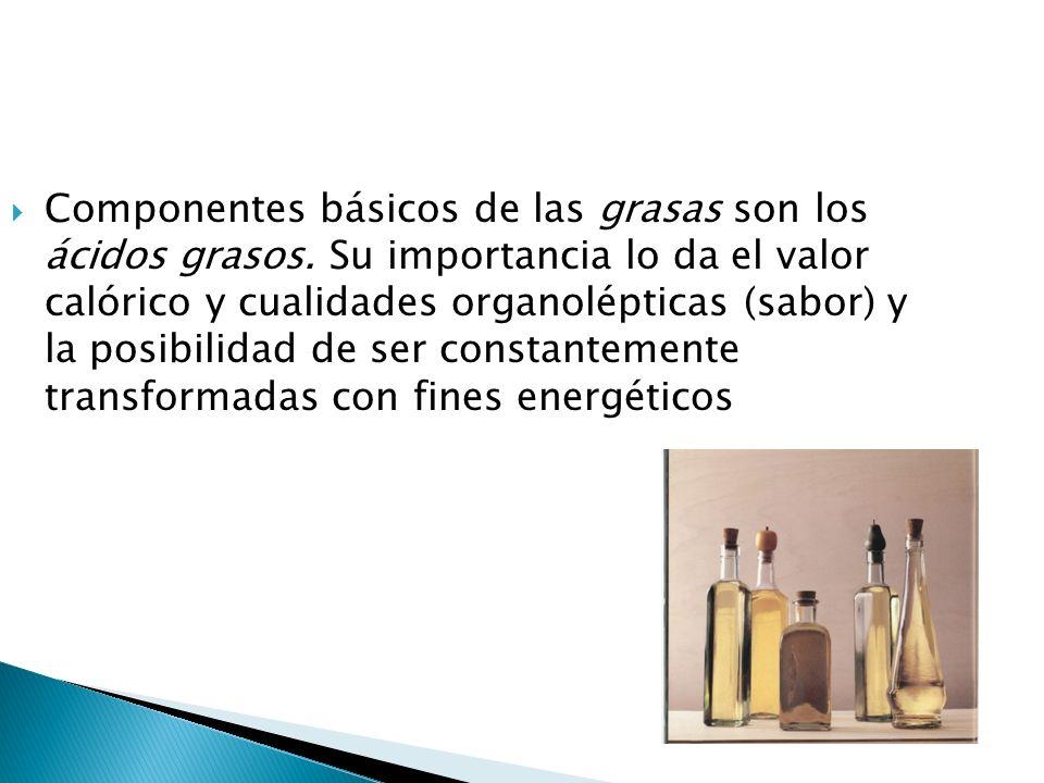 Componentes básicos de las grasas son los ácidos grasos. Su importancia lo da el valor calórico y cualidades organolépticas (sabor) y la posibilidad d