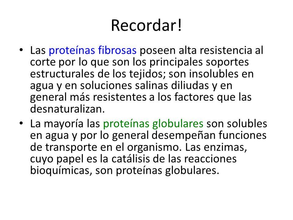 Recordar! Las proteínas fibrosas poseen alta resistencia al corte por lo que son los principales soportes estructurales de los tejidos; son insolubles