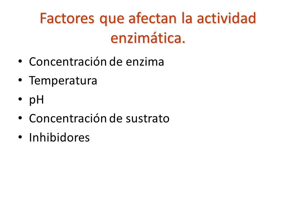 Factores que afectan la actividad enzimática. Concentración de enzima Temperatura pH Concentración de sustrato Inhibidores