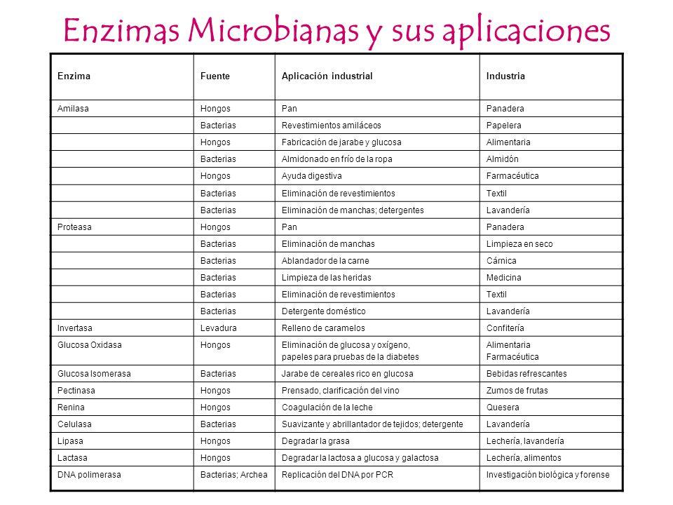 Enzimas Microbianas y sus aplicaciones EnzimaFuenteAplicación industrialIndustria AmilasaHongosPanPanadera BacteriasRevestimientos amiláceosPapelera H