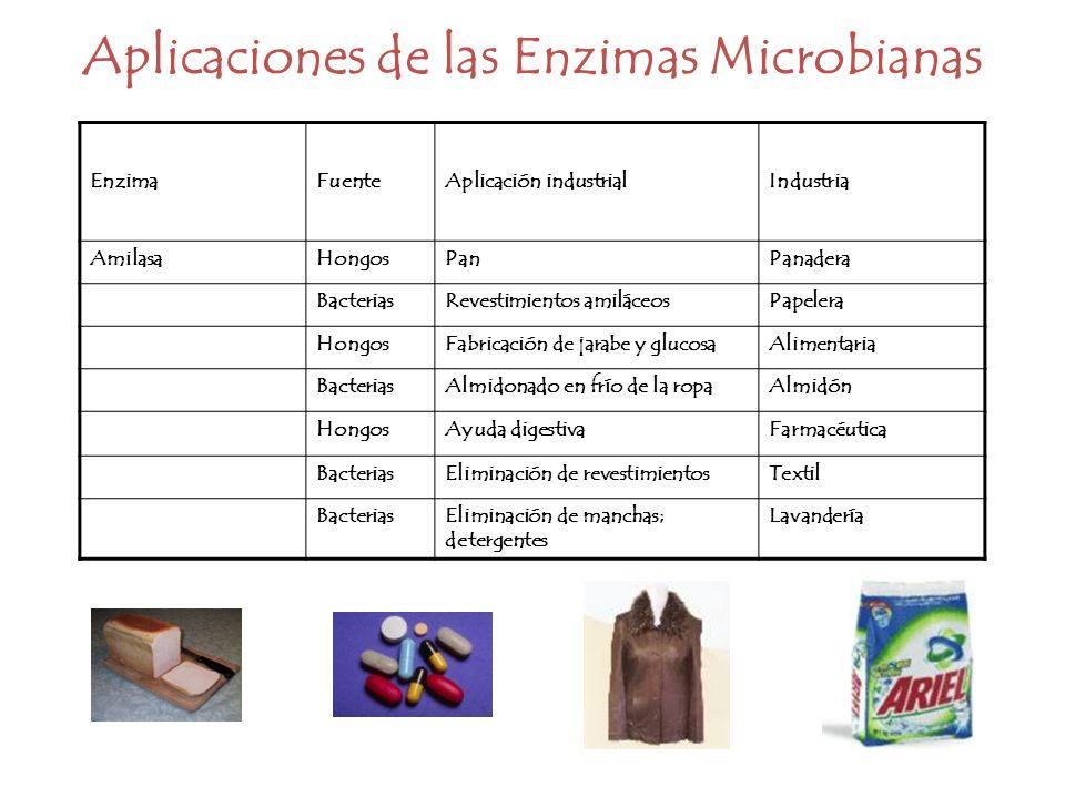 Aplicaciones de las Enzimas Microbianas EnzimaFuenteAplicación industrialIndustria AmilasaHongosPanPanadera BacteriasRevestimientos amiláceosPapelera