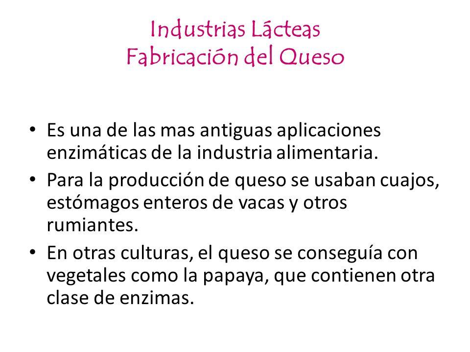 Industrias Lácteas Fabricación del Queso Es una de las mas antiguas aplicaciones enzimáticas de la industria alimentaria. Para la producción de queso