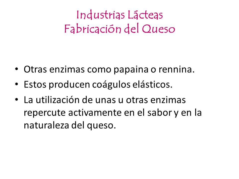 Industrias Lácteas Fabricación del Queso Otras enzimas como papaina o rennina. Estos producen coágulos elásticos. La utilización de unas u otras enzim