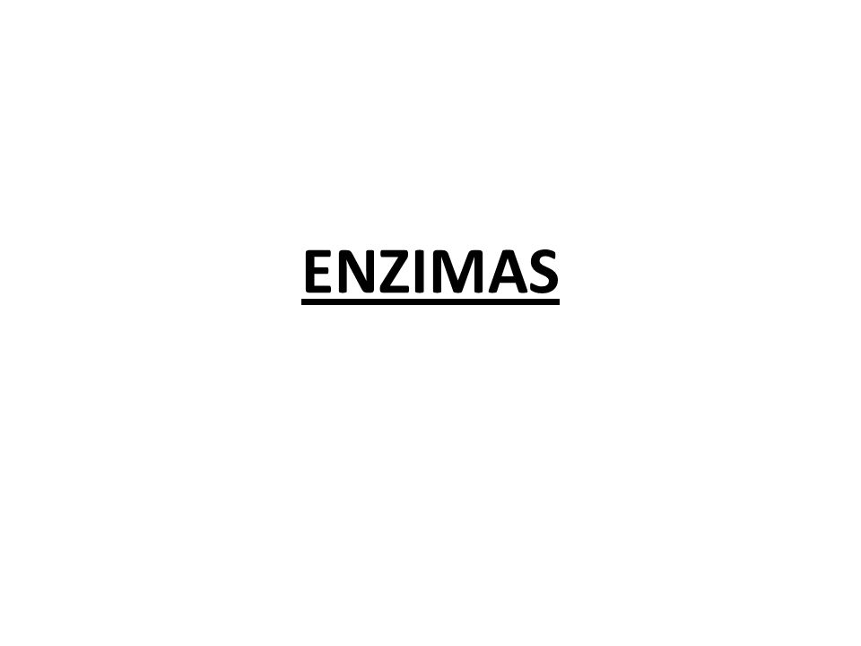 Plantas fuentes potenciales de enzimas a escala industrial.