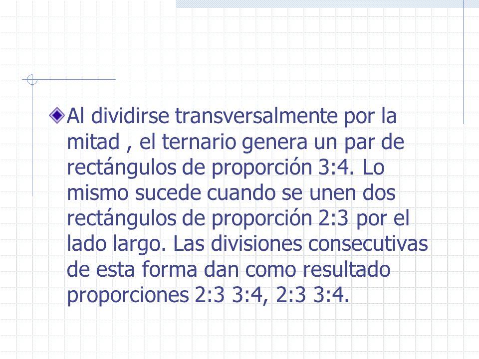 Al dividirse transversalmente por la mitad, el ternario genera un par de rectángulos de proporción 3:4. Lo mismo sucede cuando se unen dos rectángulos