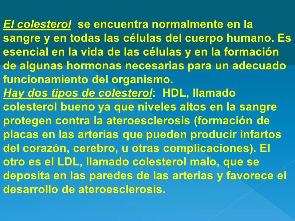 El colesterol se encuentra normalmente en la sangre y en todas las células del cuerpo humano. Es esencial en la vida de las células y en la formación
