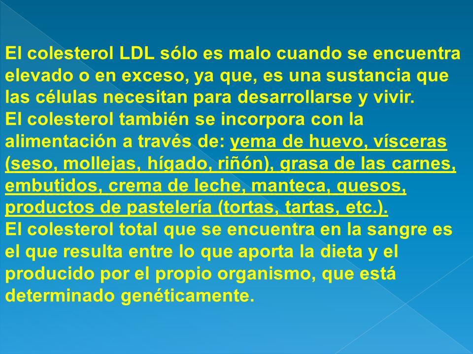El colesterol LDL sólo es malo cuando se encuentra elevado o en exceso, ya que, es una sustancia que las células necesitan para desarrollarse y vivir.