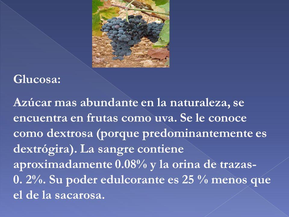 Glucosa: Azúcar mas abundante en la naturaleza, se encuentra en frutas como uva. Se le conoce como dextrosa (porque predominantemente es dextrógira).