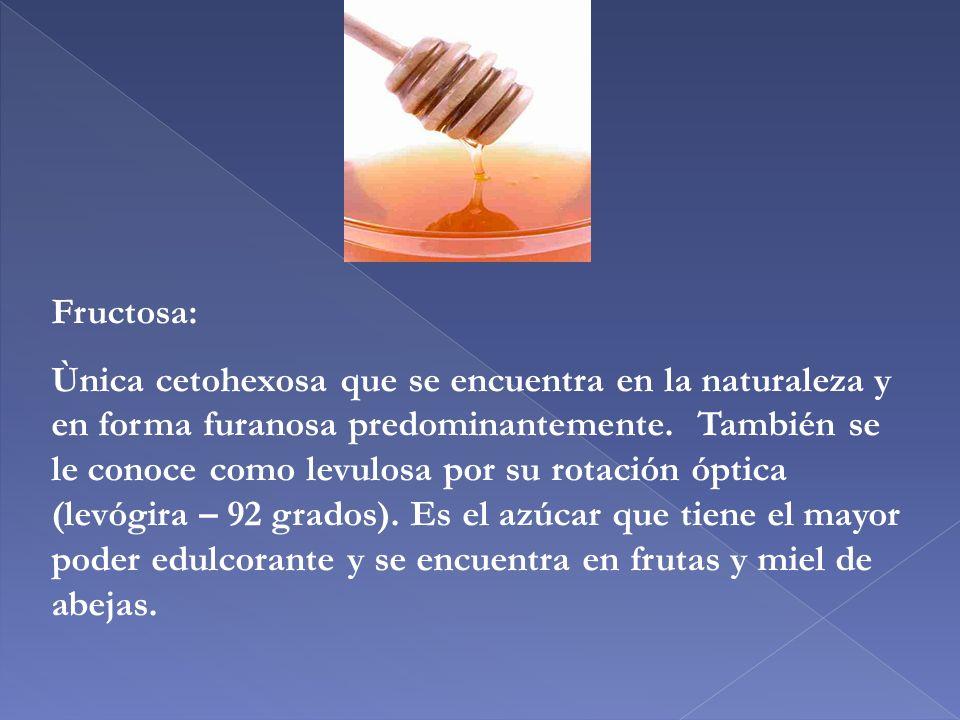 Fructosa: Ùnica cetohexosa que se encuentra en la naturaleza y en forma furanosa predominantemente. También se le conoce como levulosa por su rotación
