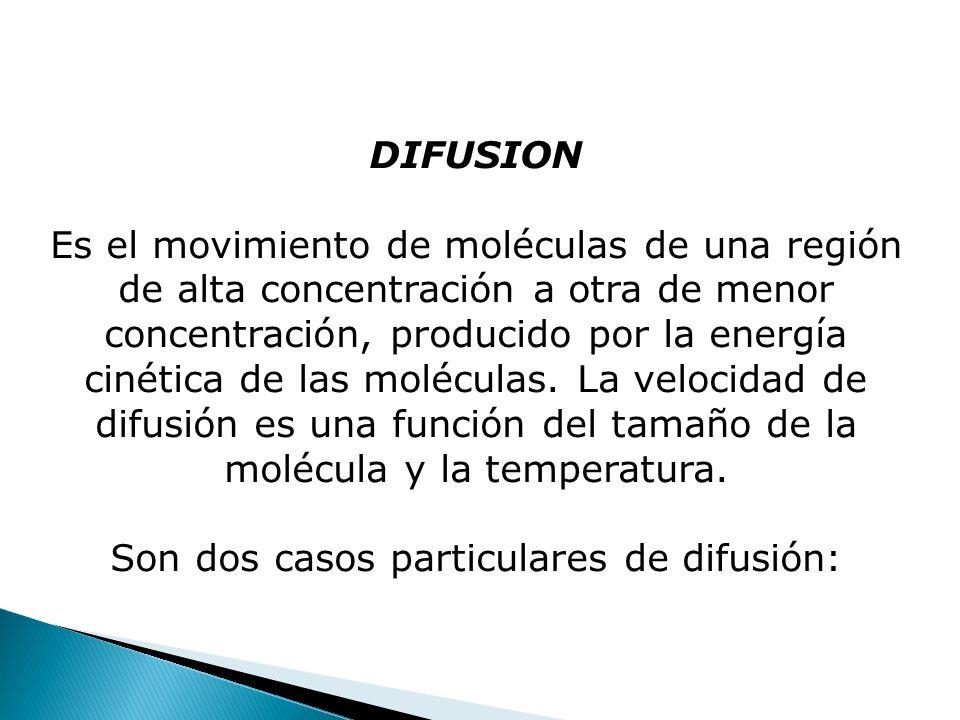 DIFUSION Es el movimiento de moléculas de una región de alta concentración a otra de menor concentración, producido por la energía cinética de las mol
