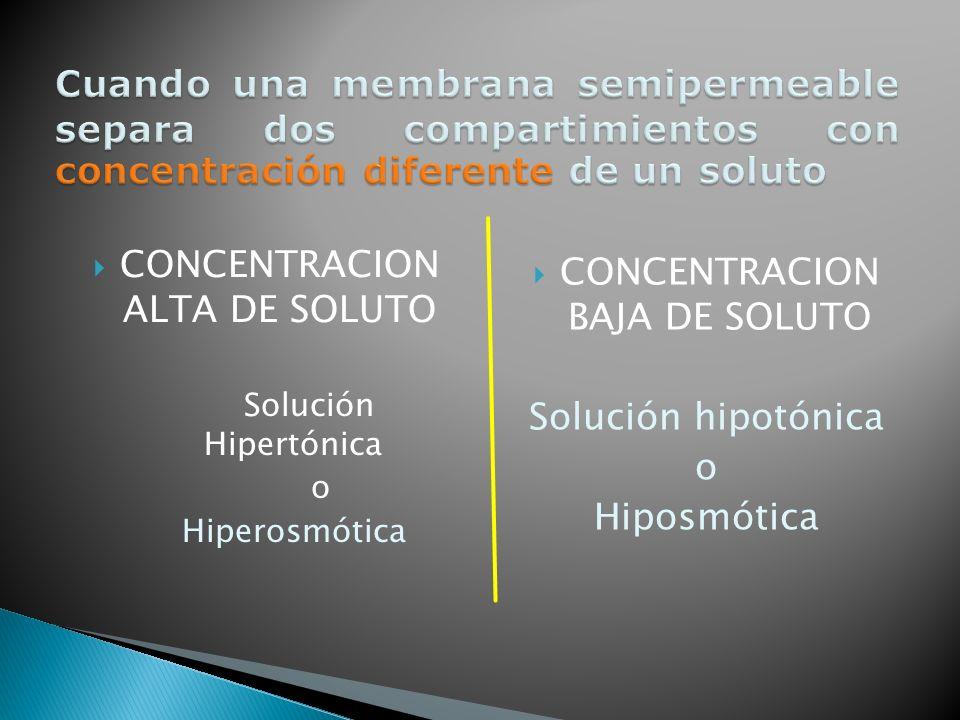 CONCENTRACION ALTA DE SOLUTO Solución Hipertónica o Hiperosmótica CONCENTRACION BAJA DE SOLUTO Solución hipotónica o Hiposmótica