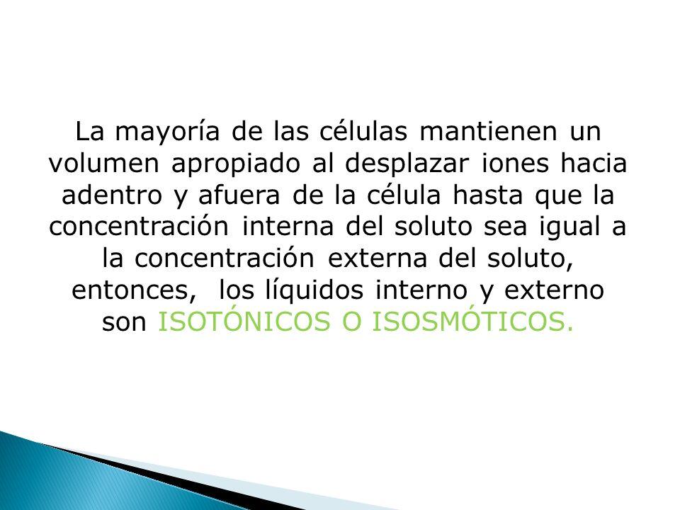 La mayoría de las células mantienen un volumen apropiado al desplazar iones hacia adentro y afuera de la célula hasta que la concentración interna del