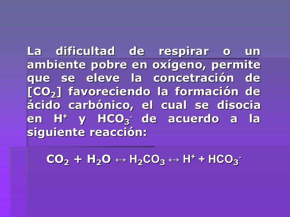 La dificultad de respirar o un ambiente pobre en oxígeno, permite que se eleve la concetración de [CO 2 ] favoreciendo la formación de ácido carbónico