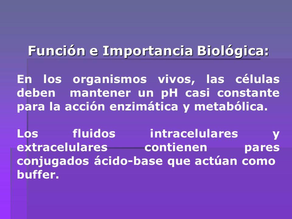 Función e Importancia Biológica: En los organismos vivos, las células deben mantener un pH casi constante para la acción enzimática y metabólica. Los