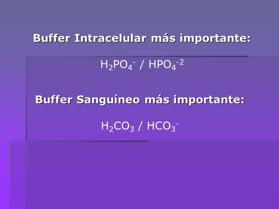 Otros sistemas que ayudan a mantener el pH sanguíneo son: H 2 PO 4 - / HPO 4 -2 Proteínas Ácidos Nucleicos Coenzimas Metabolitos intermediarios Algunos poseen grupos funcionales que son ácidos o bases débiles, por consiguiente, ejercen influencia en el pH intracelular y éste afecta la estructura y el comportamiento de tales moléculas.