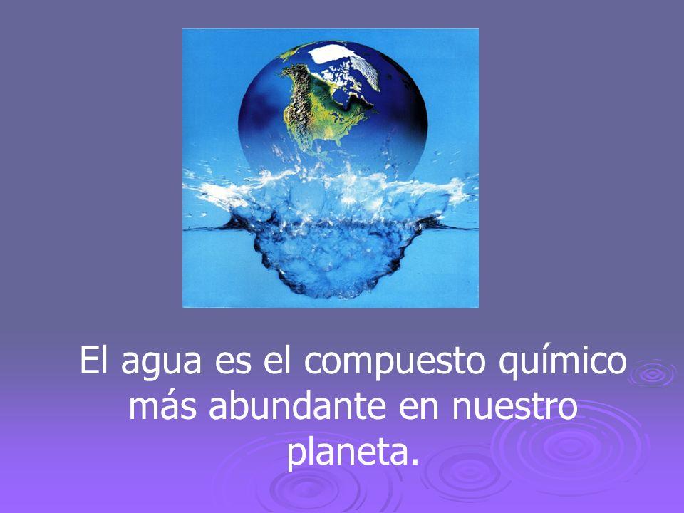 El agua presenta los tres estados de agregación de la materia: líquido, sólido y gaseoso.