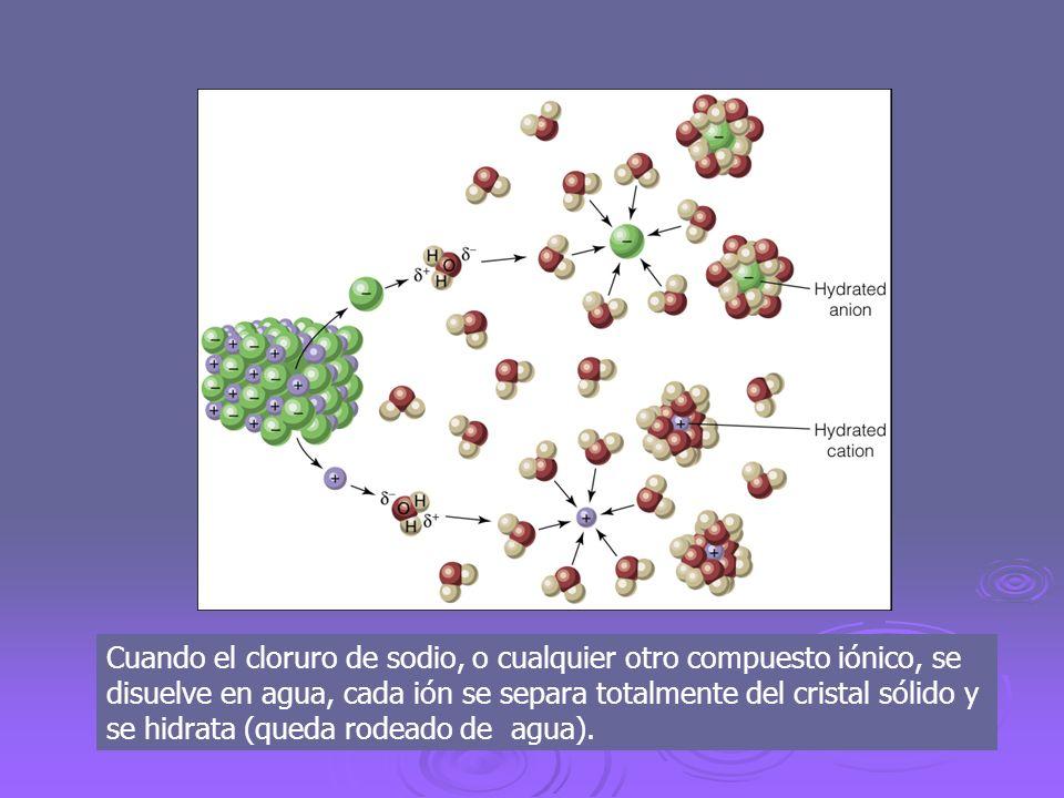 Cuando el cloruro de sodio, o cualquier otro compuesto iónico, se disuelve en agua, cada ión se separa totalmente del cristal sólido y se hidrata (que