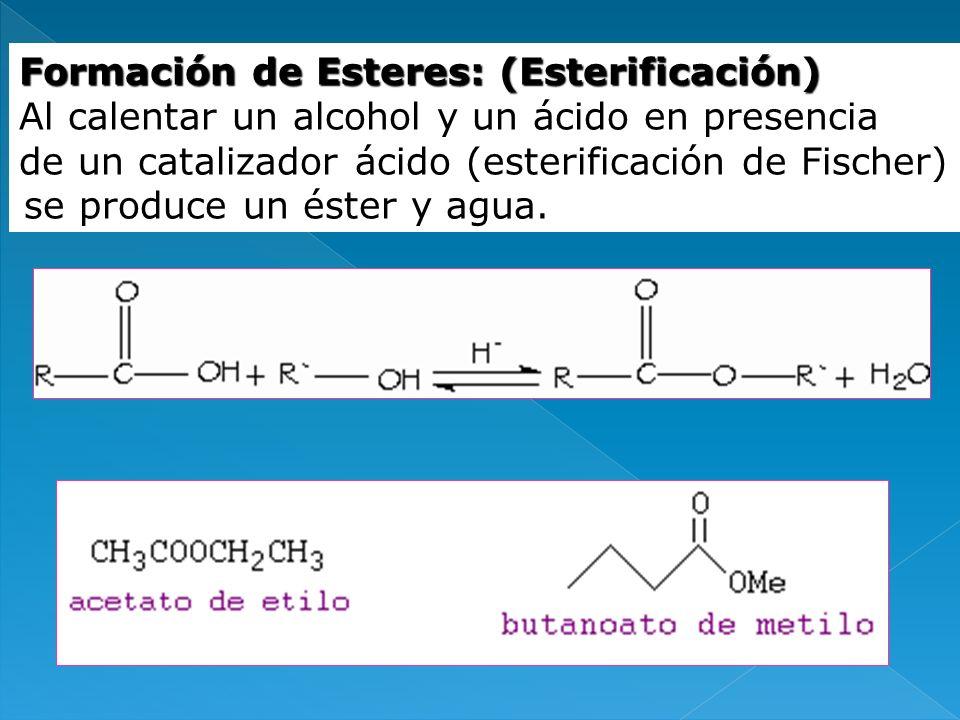 Formación de Esteres: (Esterificación) Al calentar un alcohol y un ácido en presencia de un catalizador ácido (esterificación de Fischer) se produce u