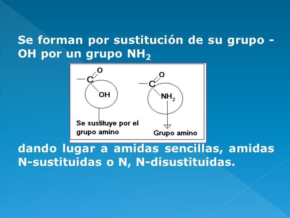 Se forman por sustitución de su grupo - OH por un grupo NH 2 dando lugar a amidas sencillas, amidas N-sustituidas o N, N-disustituidas.