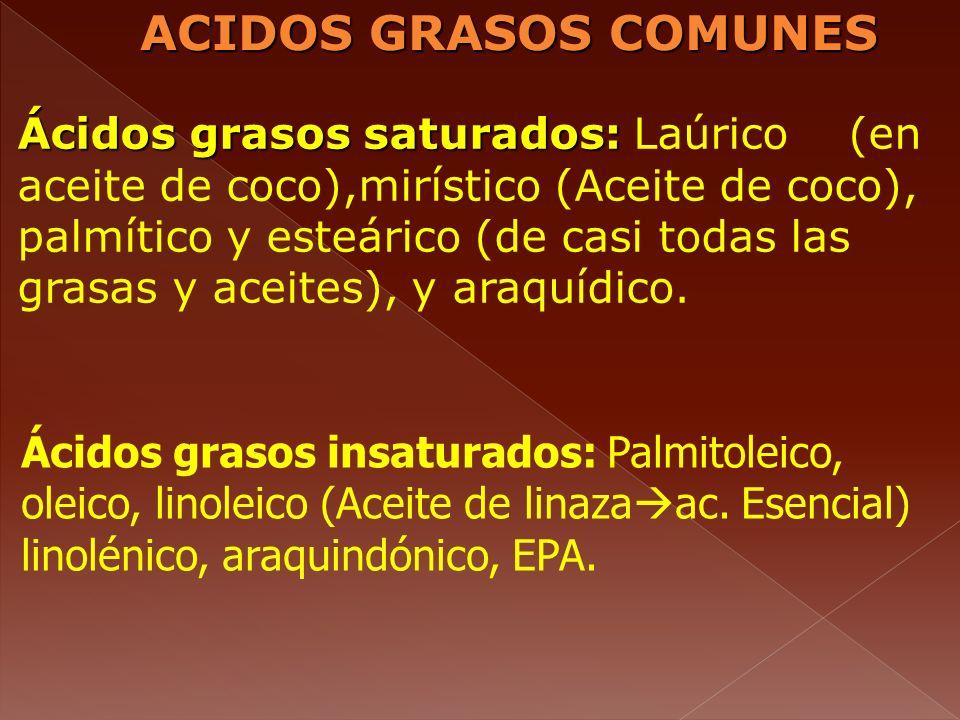 ACIDOS GRASOS COMUNES Ácidos grasos insaturados: Palmitoleico, oleico, linoleico (Aceite de linaza ac. Esencial) linolénico, araquindónico, EPA. Ácido