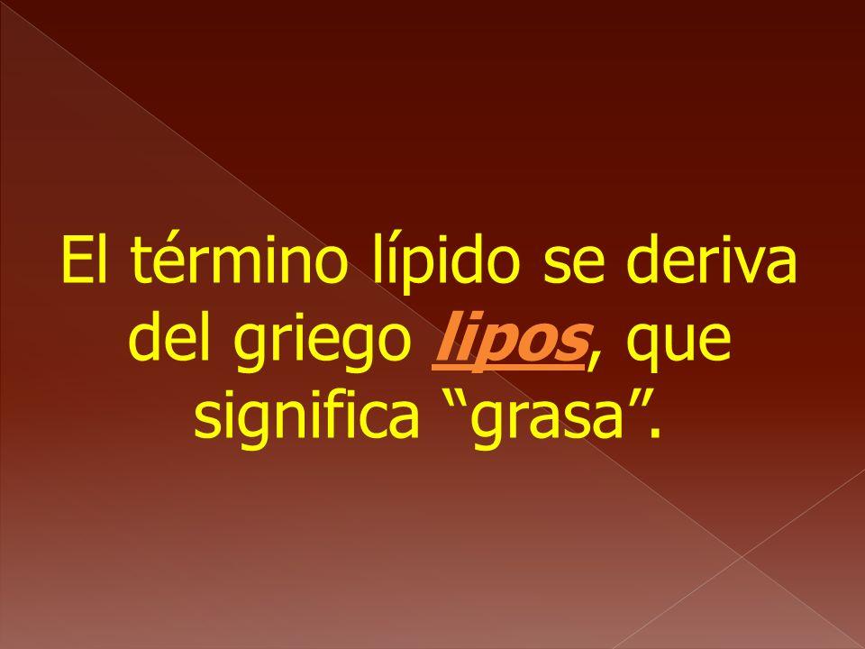 El término lípido se deriva del griego lipos, que significa grasa.