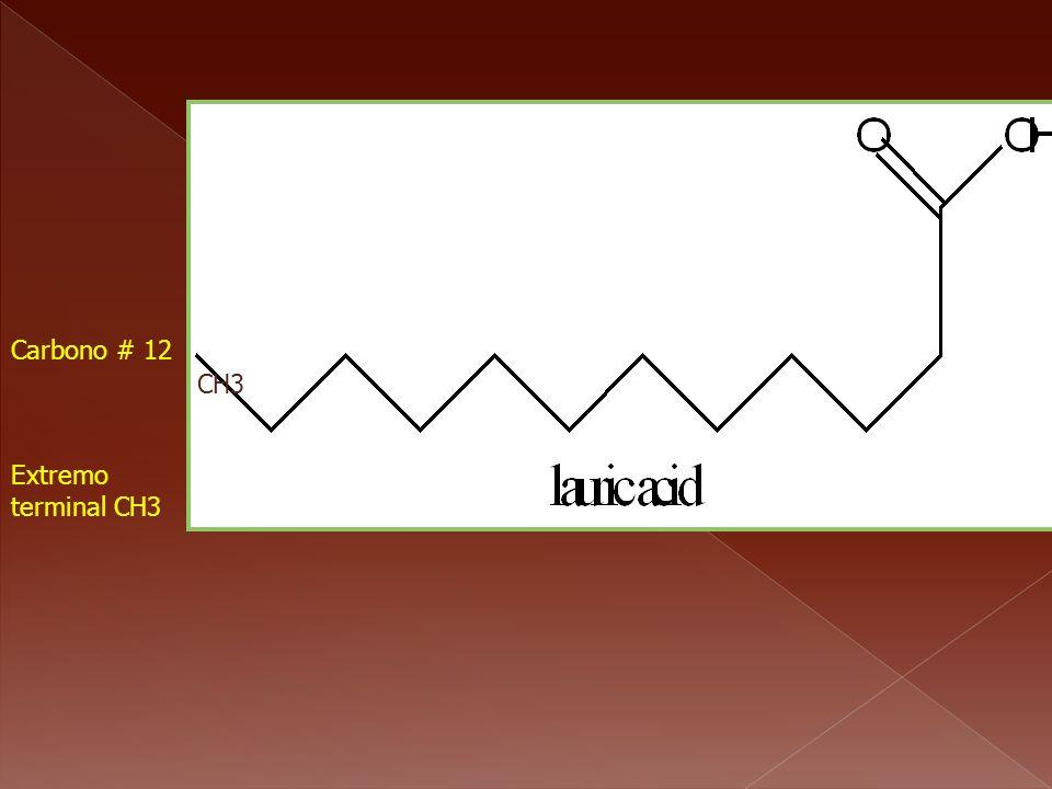 Carbono # 1 Extremo terminal CH3 Carbono # 12 CH3