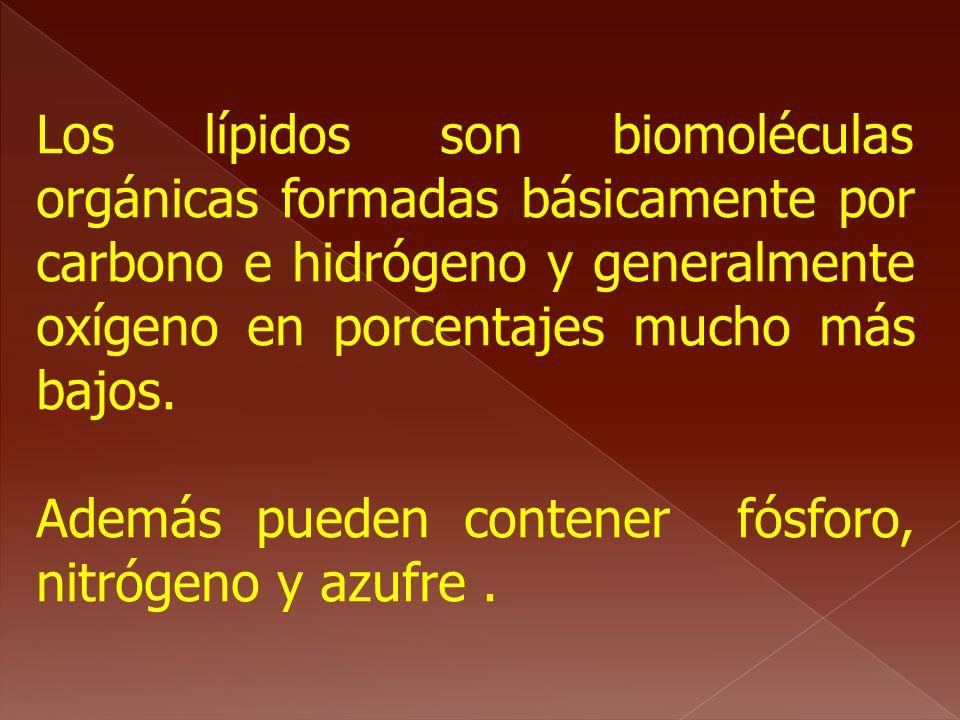 Los lípidos son biomoléculas orgánicas formadas básicamente por carbono e hidrógeno y generalmente oxígeno en porcentajes mucho más bajos. Además pued
