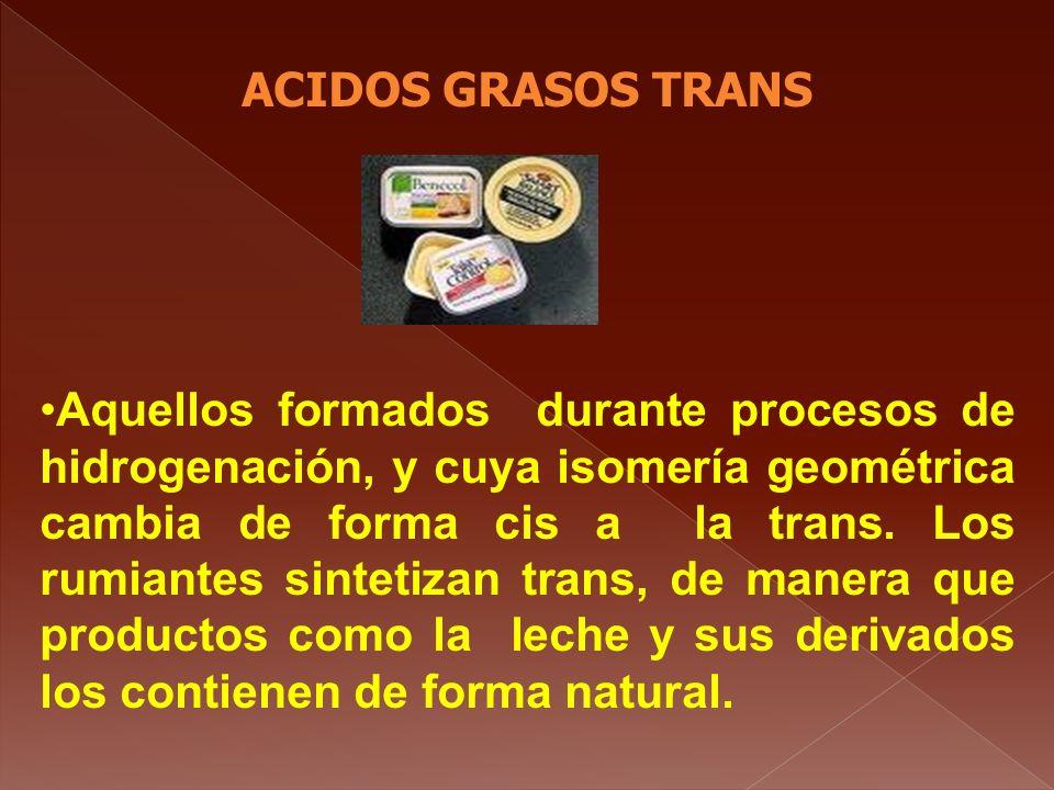 ACIDOS GRASOS TRANS Aquellos formados durante procesos de hidrogenación, y cuya isomería geométrica cambia de forma cis a la trans. Los rumiantes sint