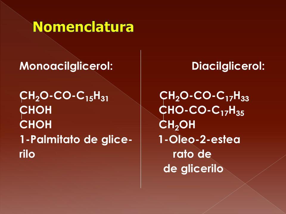 Monoacilglicerol: Diacilglicerol: CH 2 O-CO-C 15 H 31 CH 2 O-CO-C 17 H 33 CHOH CHO-CO-C 17 H 35 CHOH CH 2 OH 1-Palmitato de glice- 1-Oleo-2-estea rilo