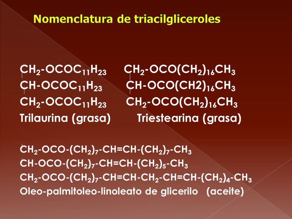CH 2 -OCOC 11 H 23 CH 2 -OCO(CH 2 ) 16 CH 3 CH-OCOC 11 H 23 CH-OCO(CH2) 16 CH 3 CH 2 -OCOC 11 H 23 CH 2 -OCO(CH 2 ) 16 CH 3 Trilaurina (grasa) Trieste