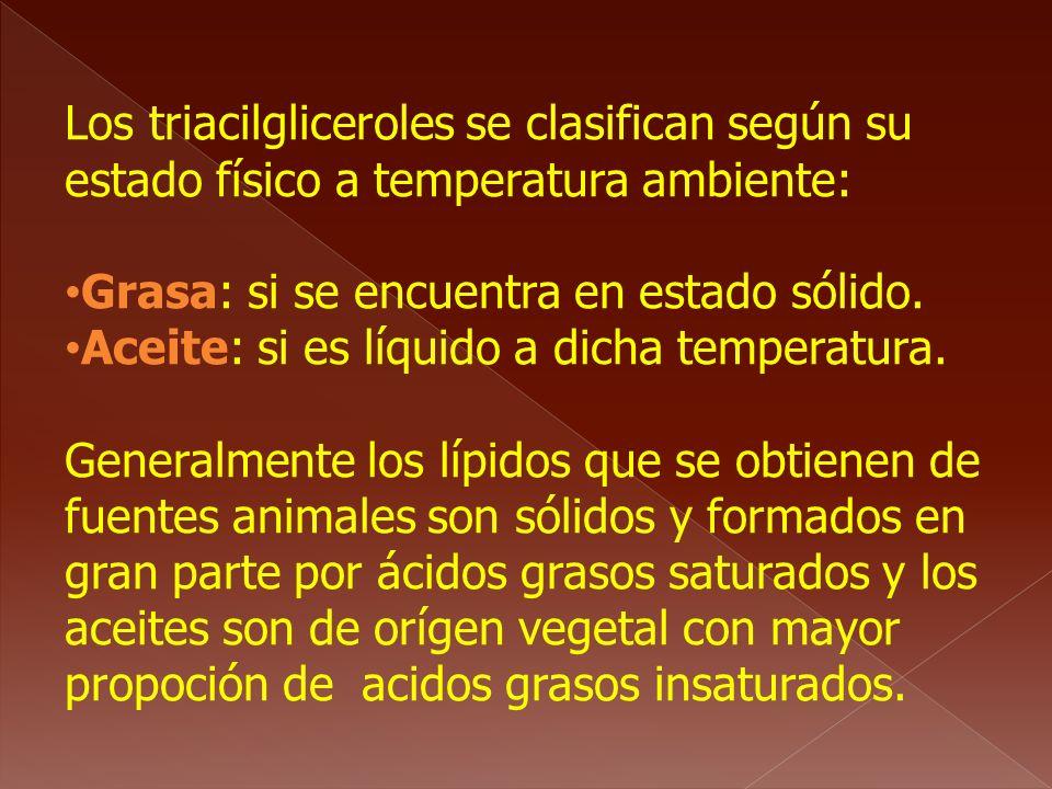Los triacilgliceroles se clasifican según su estado físico a temperatura ambiente: Grasa: si se encuentra en estado sólido. Aceite: si es líquido a di