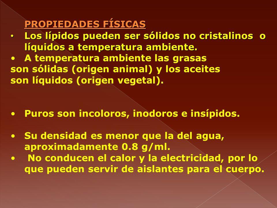 PROPIEDADES FÍSICAS Los lípidos pueden ser sólidos no cristalinos o líquidos a temperatura ambiente. Los lípidos pueden ser sólidos no cristalinos o l