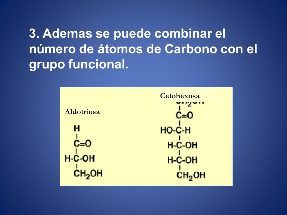 3. Ademas se puede combinar el número de átomos de Carbono con el grupo funcional. Aldotriosa Cetohexosa