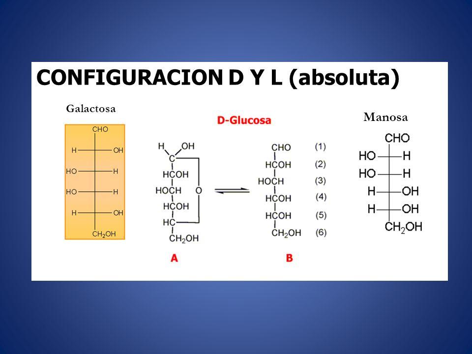 CONFIGURACION D Y L (absoluta) Galactosa Manosa