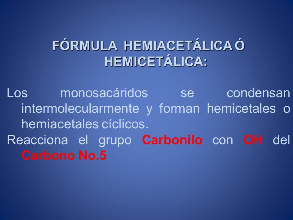 FÓRMULA HEMIACETÁLICA Ó HEMICETÁLICA: Los monosacáridos se condensan intermolecularmente y forman hemicetales o hemiacetales cíclicos. Reacciona el gr
