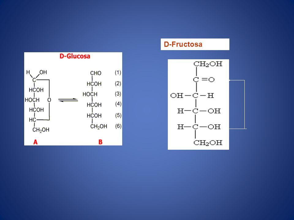 D-Fructosa