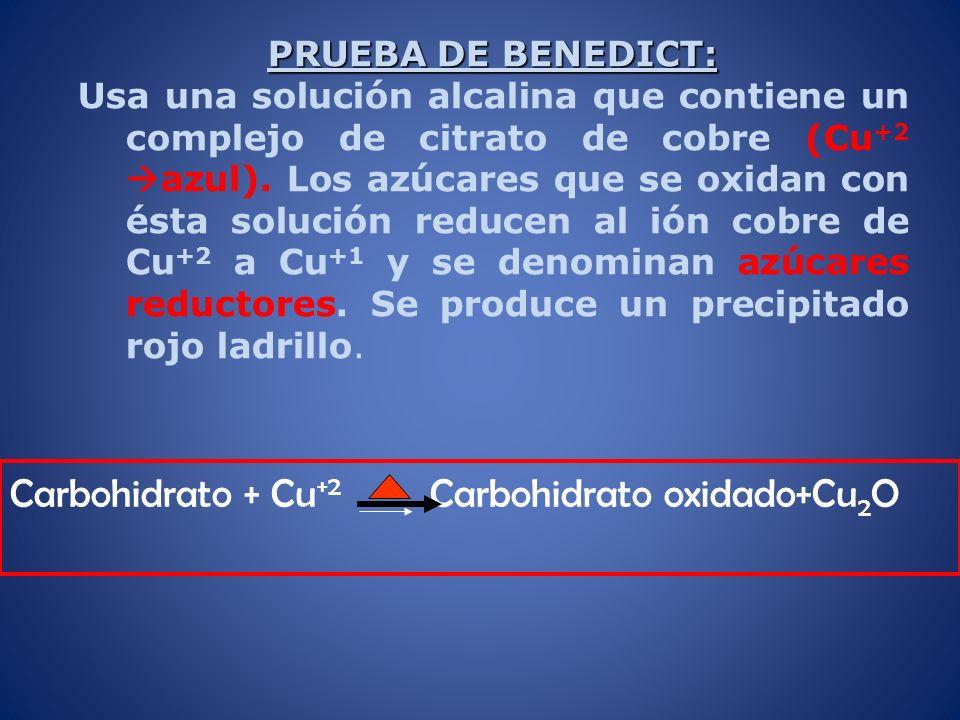 PRUEBA DE BENEDICT: Usa una solución alcalina que contiene un complejo de citrato de cobre (Cu +2 azul). Los azúcares que se oxidan con ésta solución