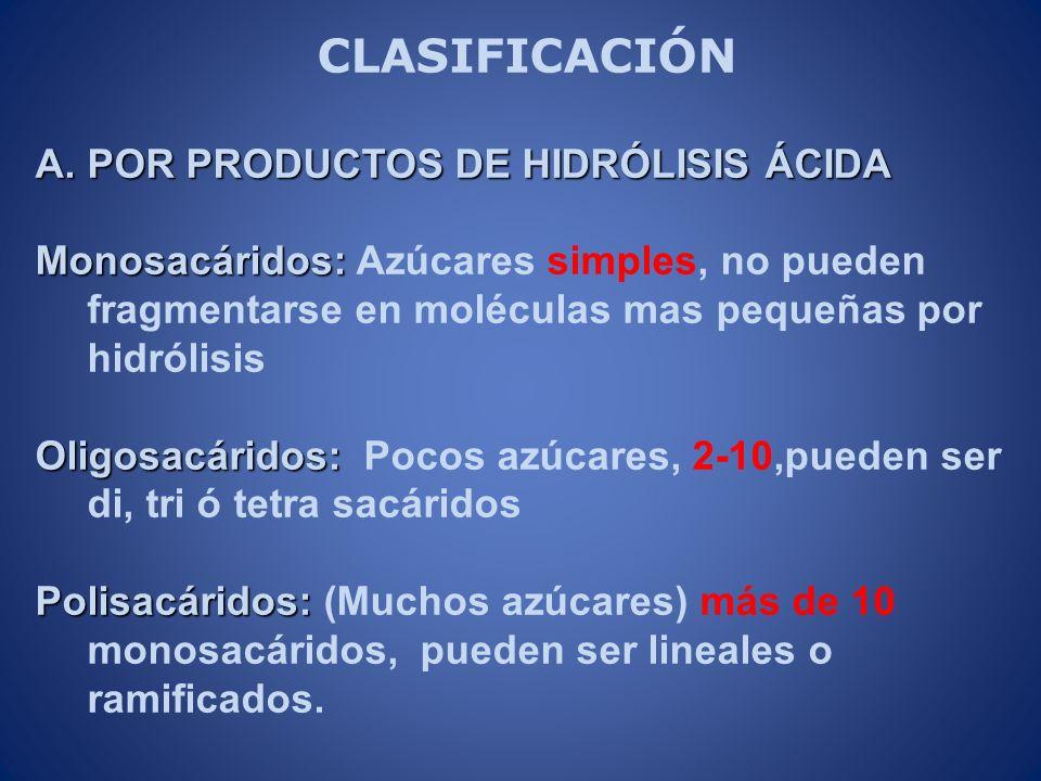 CLASIFICACIÓN A.POR PRODUCTOS DE HIDRÓLISIS ÁCIDA Monosacáridos: Monosacáridos: Azúcares simples, no pueden fragmentarse en moléculas mas pequeñas por