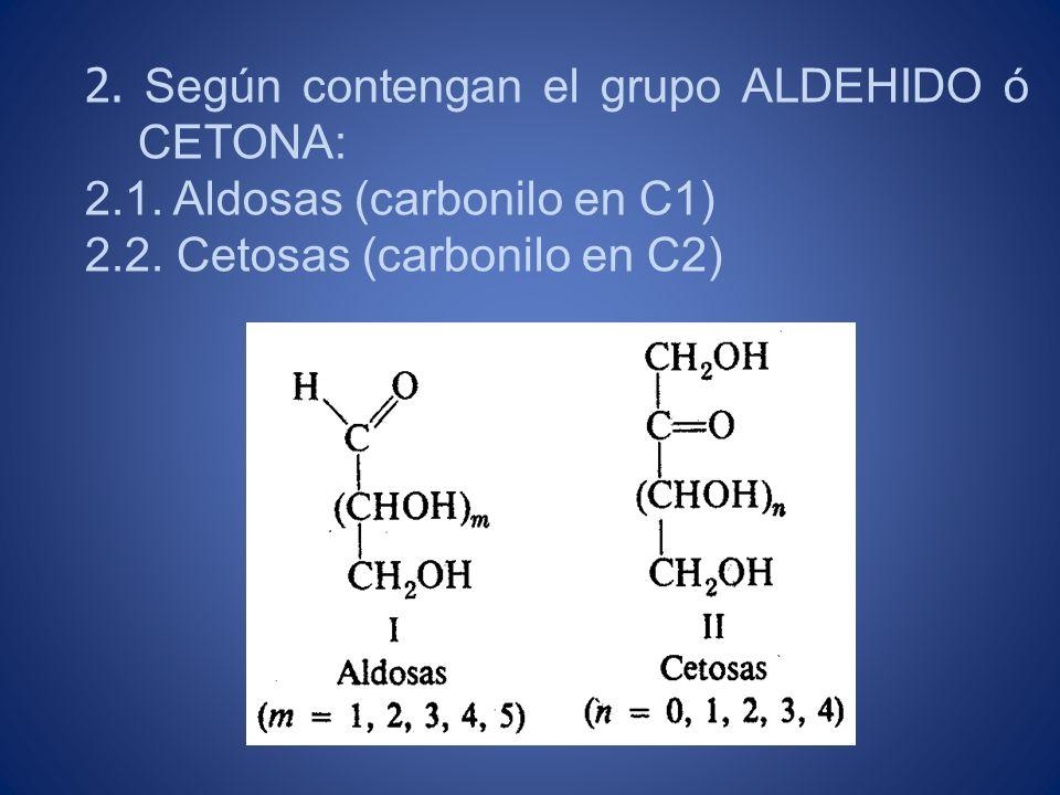 2. Según contengan el grupo ALDEHIDO ó CETONA: 2.1. Aldosas (carbonilo en C1) 2.2. Cetosas (carbonilo en C2)