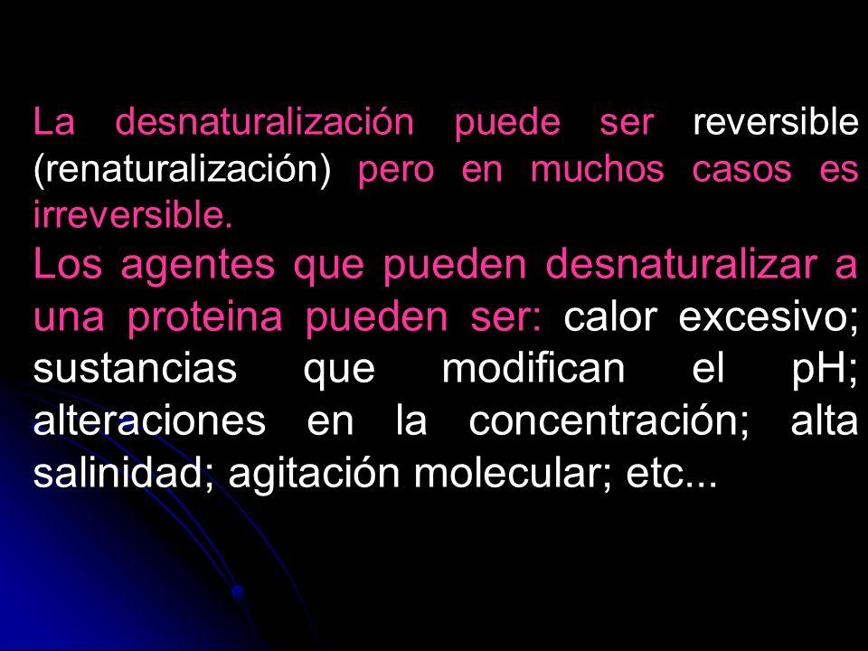 La desnaturalización puede ser reversible (renaturalización) pero en muchos casos es irreversible. Los agentes que pueden desnaturalizar a una protein