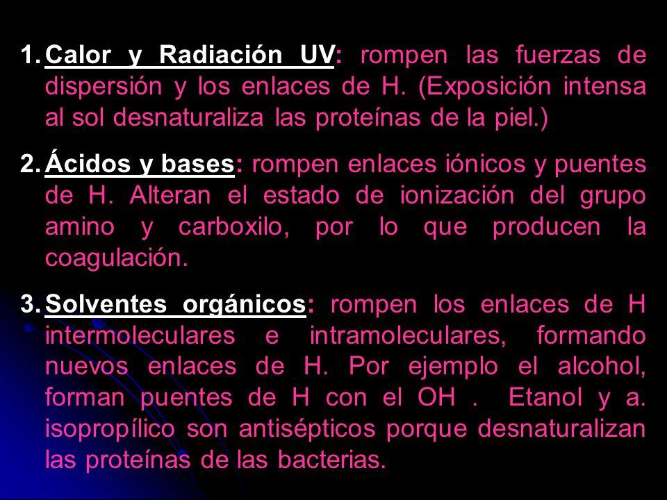1.Calor y Radiación UV: rompen las fuerzas de dispersión y los enlaces de H. (Exposición intensa al sol desnaturaliza las proteínas de la piel.) 2.Áci