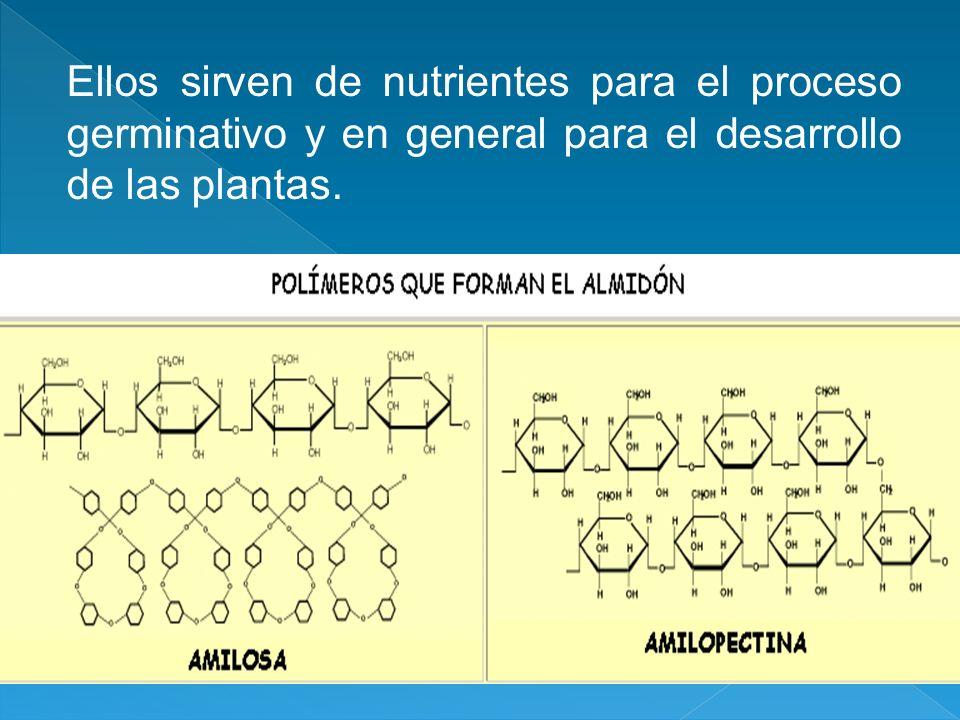 Ellos sirven de nutrientes para el proceso germinativo y en general para el desarrollo de las plantas.