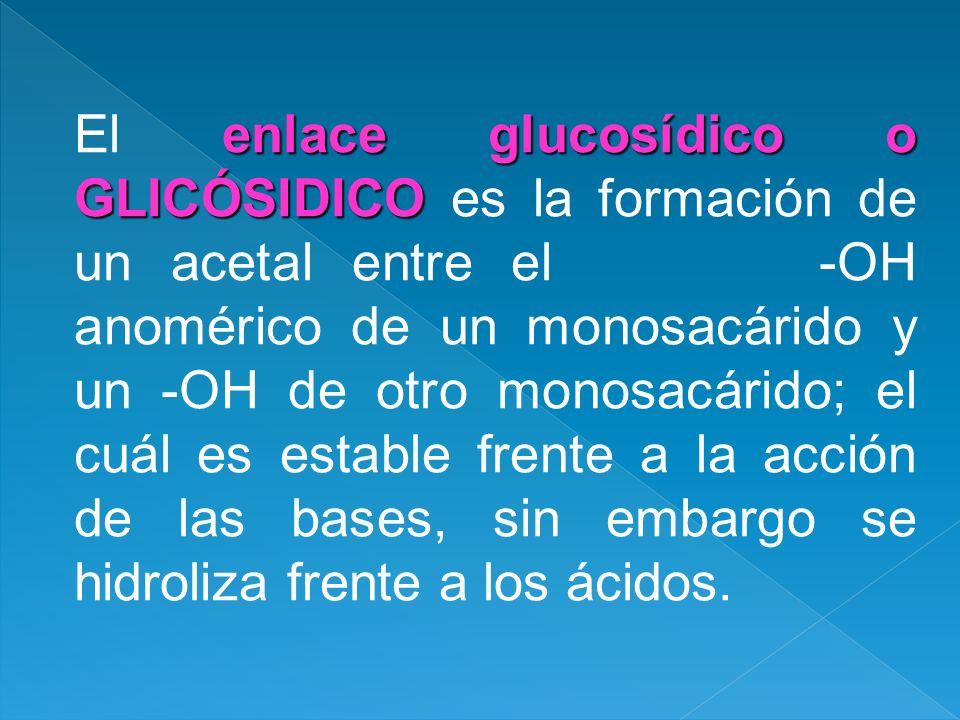 enlace glucosídico o GLICÓSIDICO El enlace glucosídico o GLICÓSIDICO es la formación de un acetal entre el -OH anomérico de un monosacárido y un -OH d