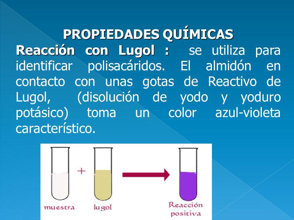 PROPIEDADES QUÍMICAS Reacción con Lugol : Reacción con Lugol : se utiliza para identificar polisacáridos. El almidón en contacto con unas gotas de Rea