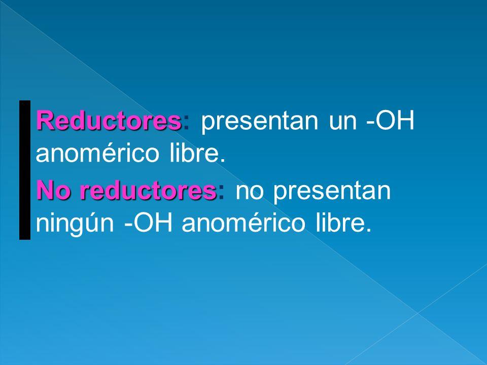 Reductores Reductores: presentan un -OH anomérico libre. No reductores No reductores: no presentan ningún -OH anomérico libre.