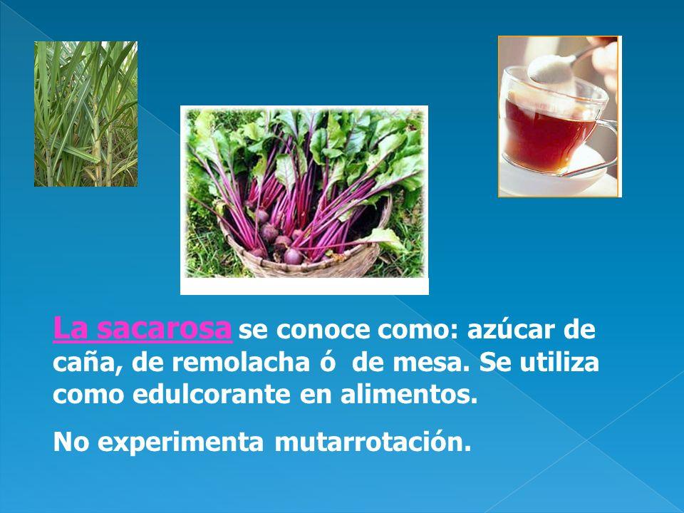 La sacarosa se conoce como: azúcar de caña, de remolacha ó de mesa. Se utiliza como edulcorante en alimentos. No experimenta mutarrotación.