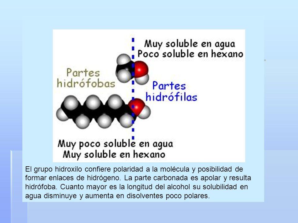 El grupo hidroxilo confiere polaridad a la molécula y posibilidad de formar enlaces de hidrógeno. La parte carbonada es apolar y resulta hidrófoba. Cu