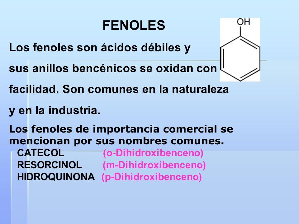 FENOLES Los fenoles son ácidos débiles y sus anillos bencénicos se oxidan con facilidad. Son comunes en la naturaleza y en la industria. Los fenoles d