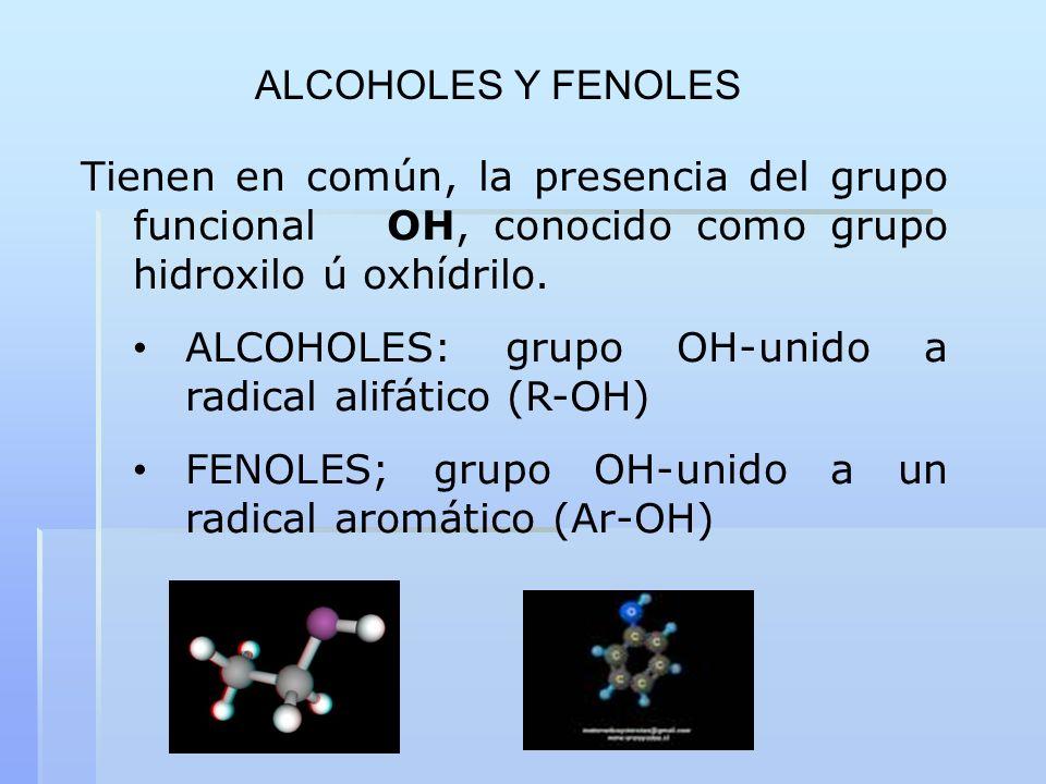 Tienen en común, la presencia del grupo funcional OH, conocido como grupo hidroxilo ú oxhídrilo. ALCOHOLES: grupo OH-unido a radical alifático (R-OH)