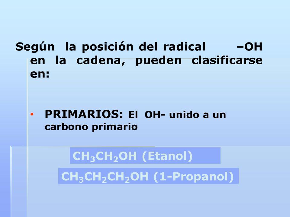 Según la posición del radical –OH en la cadena, pueden clasificarse en: PRIMARIOS: El OH- unido a un carbono primario CH 3 CH 2 OH (Etanol) CH 3 CH 2